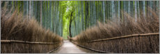 Selvklæbende plakat  Bamboo Forest Panorama in Sagano Arashiyama in Kyoto, Japan - Jan Christopher Becke