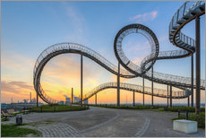 Galleritryk  Tiger and Turtle Duisburg - Michael Valjak
