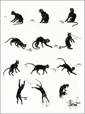Galleritryk  The cat and the frog - Théophile-Alexandre Steinlen