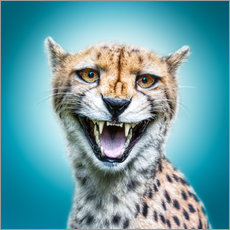 Galleritryk  Funny Wild Faces Cheetah - Manuela Kulpa