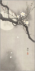 Galleritryk  Plum Blossoms at Night - Ohara Koson
