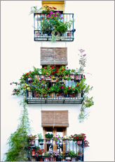 Selvklæbende plakat  Facade with balconies full of flowers in Valencia