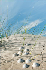 Galleritryk  Dune with sea shells - Reiner Würz