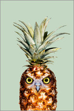 Galleritryk  Pineapple Owl - Jonas Loose