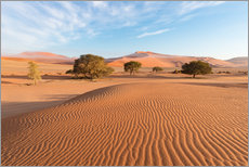 Selvklæbende plakat  Morning mist over sand dunes and Acacia trees at Sossusvlei, Namibia - Fabio Lamanna