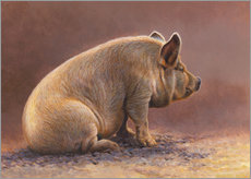Galleritryk  Pig in the wallow