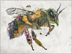 Galleritryk  honeybee - Barrett Biggers