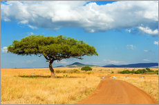 Premium-plakat A lonely tree in Africa