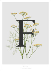 Premium-plakat F is for Fennel