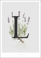 Akrylbillede  L is for Lavender - Charlotte Day