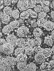 Premium-plakat Blooming garden in black and white