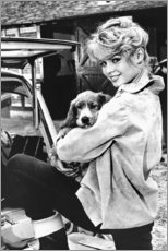 Akrylbillede  Brigitte Bardot med hvalp - Celebrity Collection