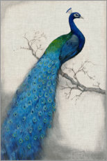 Akrylbillede  Peacock Blue I - Tim O'Toole