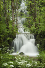 Akrylbillede  Waterfall in the forest, France - Tobias Richter