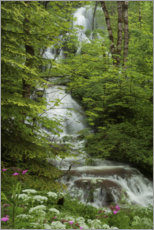 Premium-plakat Waterfall with flowers in France