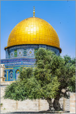 Premium-plakat Dome of the Rock with olive tree