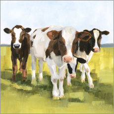 Selvklæbende plakat  Cows in the pasture II - Victoria Borges