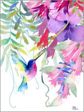Premium-plakat  Hummingbird in the hanging garden - Rachel McNaughton