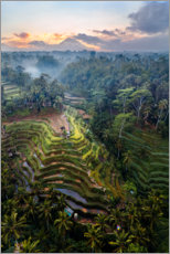 Lærredsbillede  Rice fields and volcano, Bali - Matteo Colombo