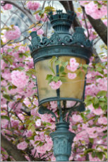 Lærredsbillede  Art Nouveau lantern with cherry blossoms in Paris - Carina Okula