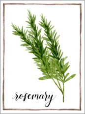 Lærredsbillede  Herbal illustration rosemary - Grace Popp