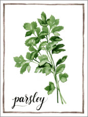 Akrylbillede  Herbal illustration of parsley - Grace Popp