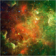 Galleritryk  Clusters of young stars