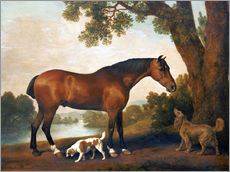 Selvklæbende plakat  Horse and two dogs - George Stubbs