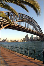 Galleritryk  Sydney Harbor Bridge - David Wall