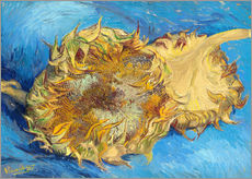 Galleritryk  Two sunflowers - Vincent van Gogh