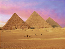 Galleritryk  Pyramids at sunset - Miva Stock