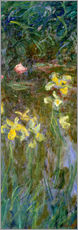 Selvklæbende plakat  Daffodils in the field - Claude Monet
