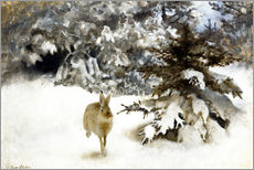 Selvklæbende plakat  A hare in the snow - Bruno Andreas Liljefors