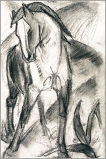 Galleritryk  Young Horse in Mountain Landscape - Franz Marc