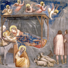 Print på træ  The Nativity - Giotto di Bondone