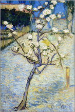 Print på træ  Blossoming Pear Tree - Vincent van Gogh
