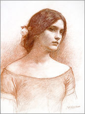 Selvklæbende plakat  Study for The Lady Clare - John William Waterhouse
