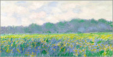 Galleritryk  Field of Yellow Irises in Giverny - Claude Monet