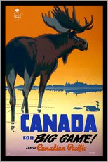 Galleritryk  Canada - big game - Travel Collection