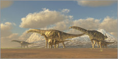 Galleritryk  A herd of Argentinosaurus dinosaurs - Corey Ford