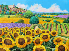 Galleritryk  Vineyards and sunflowers in Provence - Jean-Marc Janiaczyk