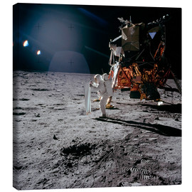 Lærredsbillede  Apollo 11 Moon Walk - Stocktrek Images