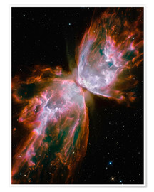 Premium-plakat The Butterfly Nebula