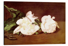 Print på aluminium  Branch of White Peonies and Secateurs - Edouard Manet
