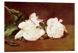 Print på skumplade  Branch of White Peonies and Secateurs - Edouard Manet