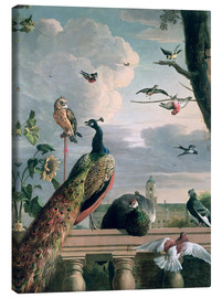 Lærredsbillede  Palace of Amsterdam with exotic birds - Melchior de Hondecoeter