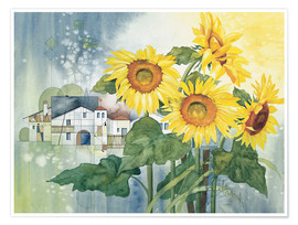 Premium-plakat  Rays of sun flowers - Franz Heigl