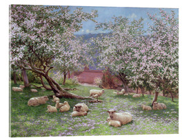 Akrylbillede  Appleblossom - William Biscombe Gardner