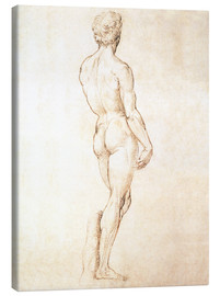 Lærredsbillede  Study of David - Michelangelo