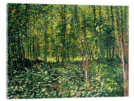 Akrylbillede  Trees and Undergrowth - Vincent van Gogh